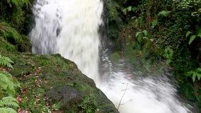 Cascade de cascade de l'eau banque de vidéos