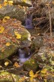Cascade de cascade de montagne Image libre de droits