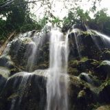 Cascade de Cebu Photo stock