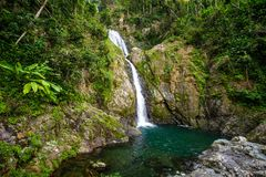 Cascade de Chorro De Dona Juana à Puerto Rico image libre de droits