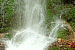 Cascade de conte de fées dans la forêt noire Allemagne Feldberg Photo libre de droits