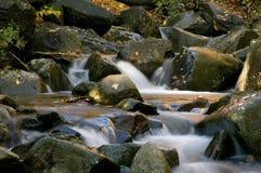 Cascade de forêt photos libres de droits