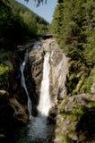 Cascade de forêt Photo libre de droits
