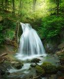 Cascade de forêt photos stock