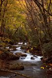 Cascade de forêt d'automne Photographie stock libre de droits