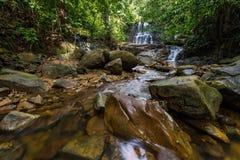 Cascade de forêt tropicale Photos stock