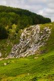 Cascade de Glenmacnass photographie stock libre de droits