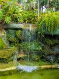 Cascade de jardin photo libre de droits