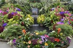 Cascade de jardin Photographie stock libre de droits