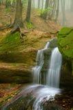 Cascade de l'eau d'automne image stock