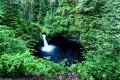 Cascade de l'Orégon Image libre de droits