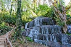 Cascade de la forêt en automne II Photos stock