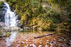 Cascade de la Navarre Photo stock