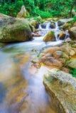 Cascade de la Thaïlande Photos stock