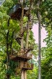 cascade de maesa au chaingmai Thaïlande du nord de maerim Photos stock