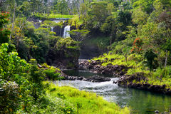 Cascade de Majesitc Pee Pee Falls dans Hilo, parc d'état de rivière de Wailuku, Hawaï Image libre de droits