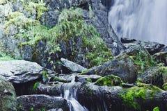Cascade de montagne dans les roches Photos libres de droits