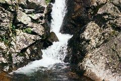 Cascade de montagne dans les roches Image stock