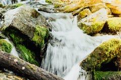 Cascade de montagne dans les roches Images libres de droits