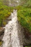 Cascade de montagne un jour brumeux Photo stock