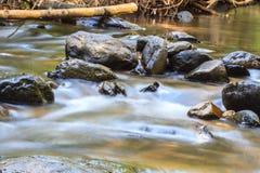 Cascade de nature dans la forêt profonde Photographie stock