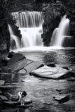 Cascade de Penllergare, Pays de Galles Photos stock