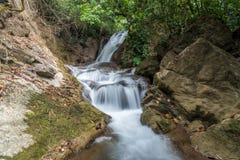 Cascade de Pha-Tak dans la forêt tropicale profonde photos libres de droits