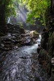 Cascade de Phlio dans le jour pluvieux au parc national Thaïlande de phlio de namtok Photo libre de droits