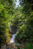 Cascade de Phliu Image stock