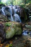 Cascade de Phu-Kaeng dans la forêt profonde en Thaïlande Photo libre de droits