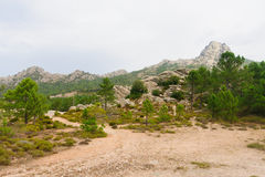 Cascade de Piscia Di Ghjaddu Στοκ φωτογραφία με δικαίωμα ελεύθερης χρήσης