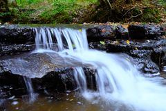 Cascade de région boisée Images stock