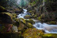 Cascade de rivière de montagne dans la forêt d'automne Photographie stock