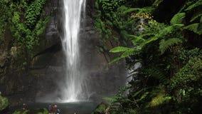 Cascade de Sekumpul dans Bali avec des touristes, Indonésie banque de vidéos
