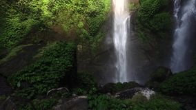 Cascade de Sekumpul dans Bali, Indonésie banque de vidéos