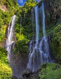 Cascade de Sekumpul en été Images libres de droits