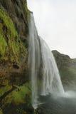 Cascade de Seljalandfoss Image libre de droits