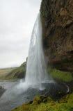Cascade de Seljalandfoss Photo libre de droits