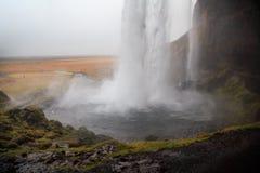 Cascade de Seljalandsfoss en Islande du sud un jour nuageux d'hiver Images libres de droits