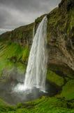 Cascade de Seljalandsfoss, Islande Photographie stock libre de droits