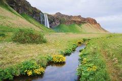 Cascade de Seljalandsfoss sur la rivière Seljalandsa, Islande Images libres de droits
