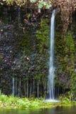 Cascade de Shiraito photos libres de droits