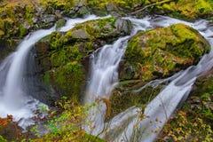 Cascade de Sol Duc dans la forêt tropicale Photographie stock libre de droits