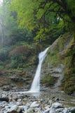 Cascade de Svanidze en parc national de Sotchi, Russie Photo libre de droits