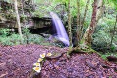 Cascade de Tham Yai au parc national de Phu Kradueng dans Loei, Thaïlande Images stock