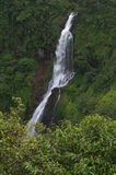 Cascade de Thoseghar dans la mousson Photographie stock libre de droits