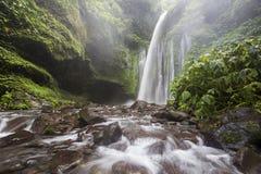 Cascade de Tiu Kelep près de Rinjani, Senaru, Lombok, Indonésie, Asie du Sud-Est Image libre de droits