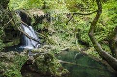 Cascade de Vaioaga Image stock