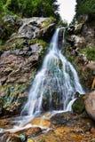 Cascade de Varciorogului en Roumanie Photo libre de droits