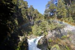 Cascade de visibilité directe Alerces - Patagonia - l'Argentine photos libres de droits